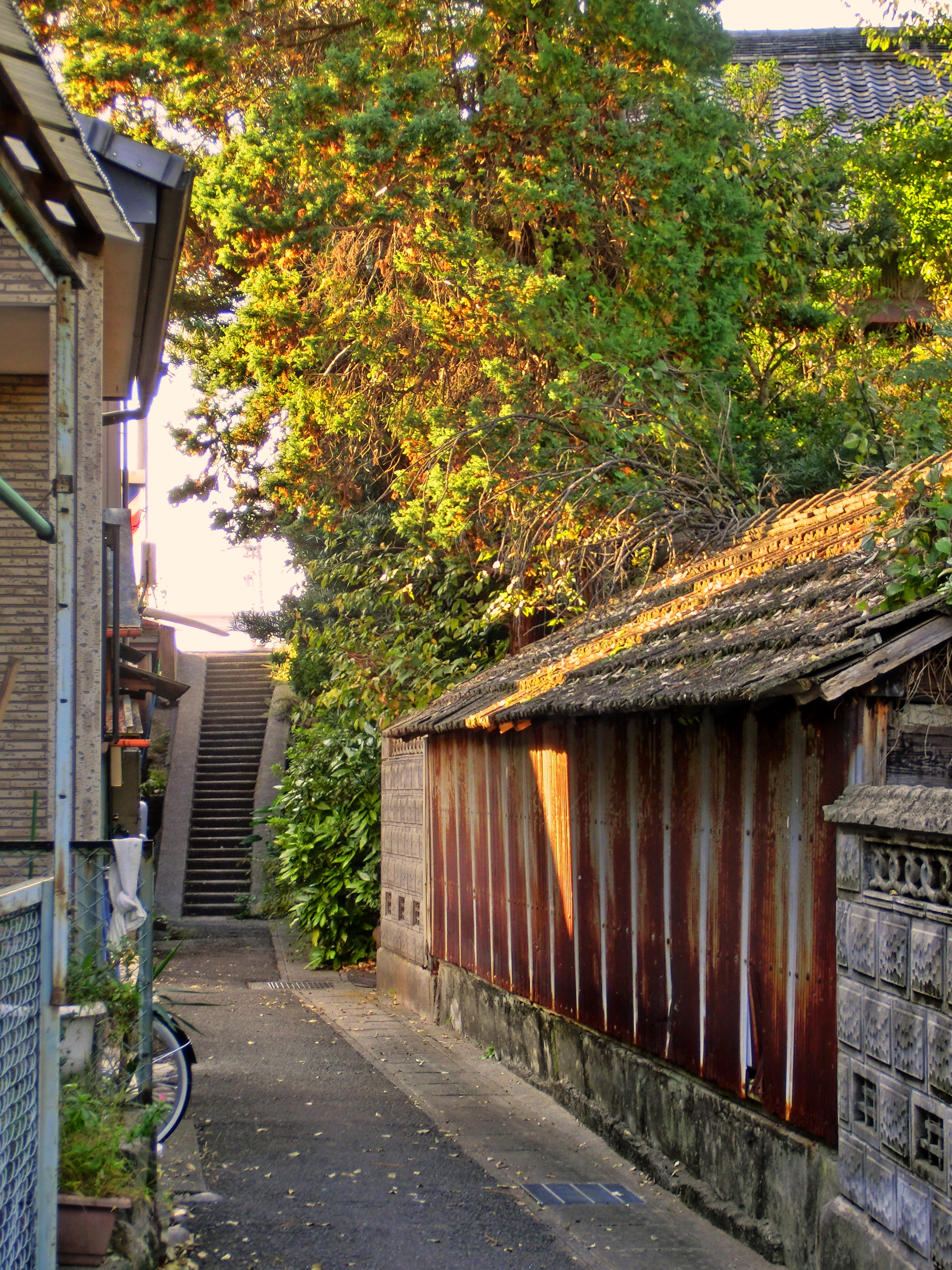 There are a lot of alleys where it is pleasant to lose Kanie-cho, and to be crowded! 2