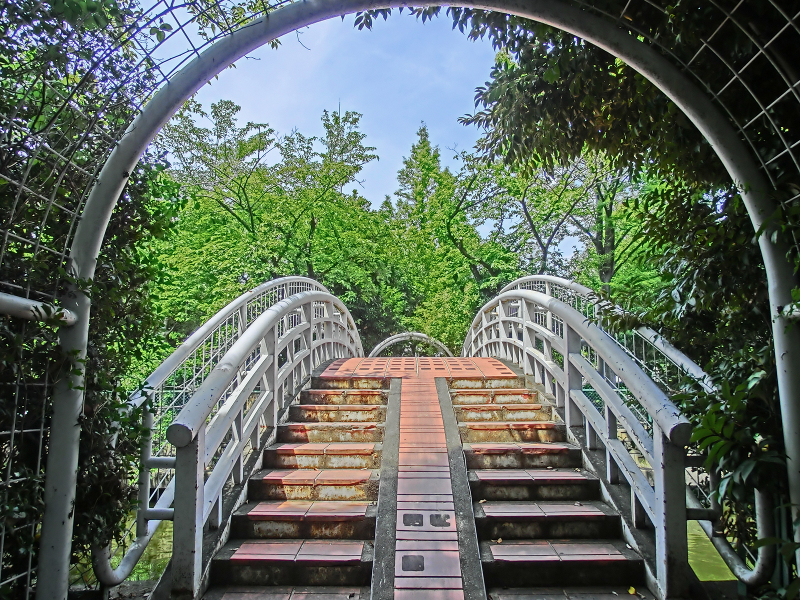 Do you find this bridge?
