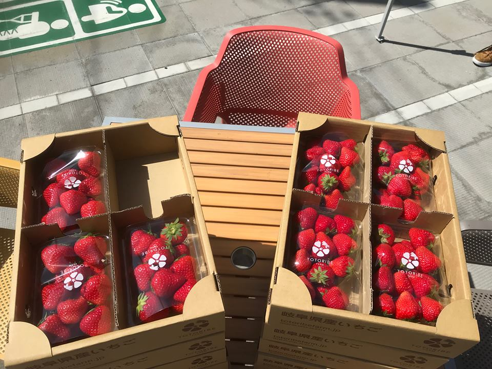 第11回 蟹江町マルシェ イチゴ「美濃娘」販売しました
